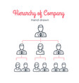 hierarchy of company teamwork team tree vector image