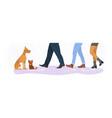 homeless cat and dog between men and women feet vector image vector image