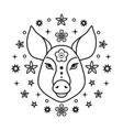 pig chinese zodiac sign vector image vector image