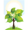 tree with lush green foliage sunny day vector image vector image