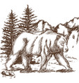 animal wild bear landscape hand-drawing vector image