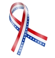 Flag Ribbon vector image vector image