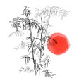 japanese traditional bamboo branches isolated on vector image