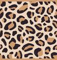 luxury leopard fur texture seamless pattern vector image vector image