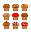 Muffin Icon Set Blueberry Chocolate and Cherry vector image vector image
