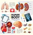 cartoon healthcare template vector image vector image
