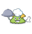 chef with food guacamole mascot cartoon style vector image vector image