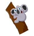Cute koala cartoon on a tree vector image vector image