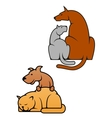 Domestic pets cat and dog vector image vector image