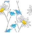 drawing flower daisy vector image vector image
