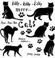Hand drawn Sketch cats silhoets and traces