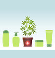 marijuana or cannabis plant in pot with hemp vector image
