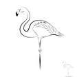 stylized flamingo vector image vector image