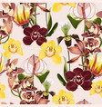 watercolor style yellow brown bordo orchid vector image vector image
