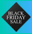 black friday sale flyer promo sign vector image