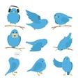 Blue birds set vector image