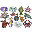 shells fish corals sea horse crab and turtle vector image