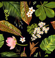 tropical plants pattern vector image vector image