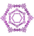 a purple hexagon arabesque vector image