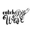 catch big waves vector image vector image