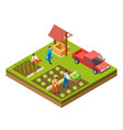 gardening and harvesting 3d isometric vector image vector image