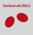 human organ icon in flat style blood cells vector image