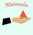 sweet juicy slice of watermelon vector image