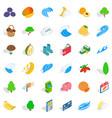 banana icons set isometric style vector image vector image