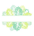 banner frame of hand printed birch aspen leaves vector image