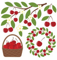 Cherry Set vector image vector image