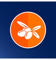 Olives Logo design template icon symbol vector image vector image