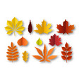 paper autumn leaves beautiful fall colourful vector image