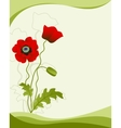 Poppy flower isolated on a green background vector image vector image