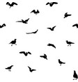 set different gull silhouettes flying eating vector image