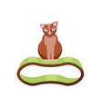 funny brown cat sitting on scratchy stuff cat vector image