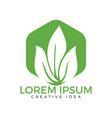 green leaf ecology nature design vector image vector image