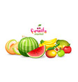 mountain fruits on a white background fruit vector image vector image