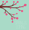 a spring season in flat style - cherry blossoms vector image vector image