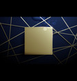 abstract gold lines and square luxury background vector image