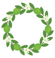 Lime Wreath vector image vector image