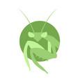 mantis symbol vector image
