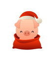 cartoon cute pig in santa claus hat and red bag vector image