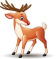 cartoon red nose deer vector image vector image