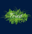 forest foliage leaves banner with calligraphy vector image