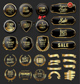 gold and black badges shields plates and laurels vector image vector image
