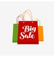 Shopping logo Big Sale symbol or icon vector image vector image