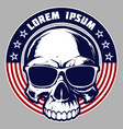 skull with american flag t-shirt graphics vector image