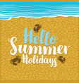 summer travel banner with inscription and crabs vector image vector image