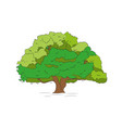 big tree drawing color vector image