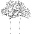 bouquet of peonies in vase vector image